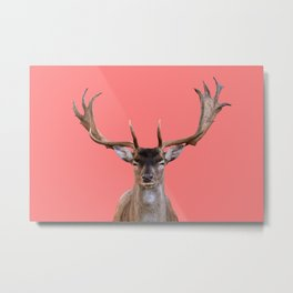 Reindeer Head - coral Background Metal Print