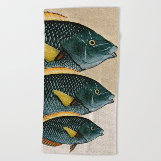 Fish Classic Designs 10 Beach Towel