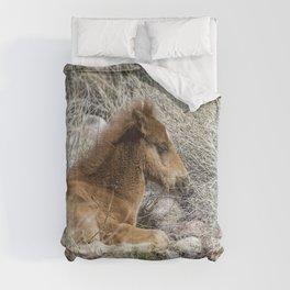 Salt River Colt Taking a Rest Comforters