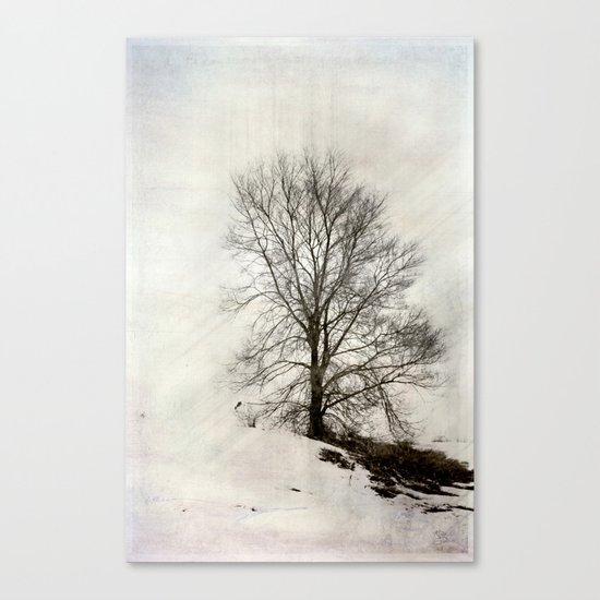 Breaking thru the Bleak Canvas Print