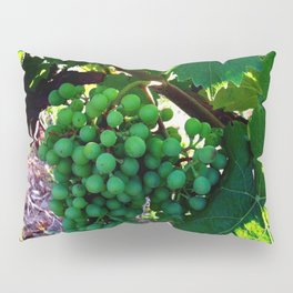Grapes of Wrath Pillow Sham