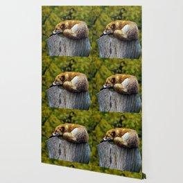 Cozy Spot Wallpaper