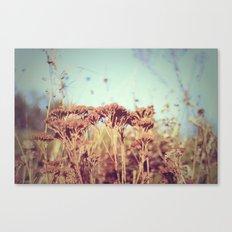 plants - Retro  Canvas Print