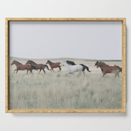 colorado horse dreams Serving Tray