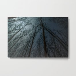 The Night Calls Metal Print
