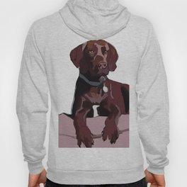 Chocolate Labrador Hoody