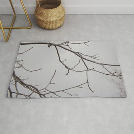 Cold Grey Sky Behind Leafless Tree Branches Rug
