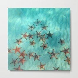 Ocean and starfish Metal Print