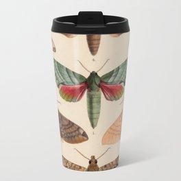 Vintage Natural History Moths Travel Mug