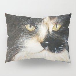aristochat Pillow Sham