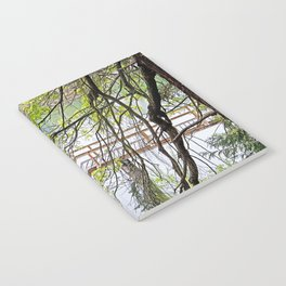 RAINY SPRING DAY AT THE DOCK IN THE WOODS Notebook