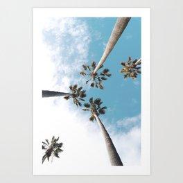 Palms Blue Sky Art Print