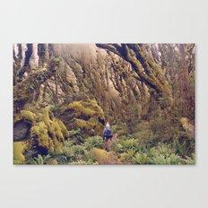 Glitch Wanderer Canvas Print