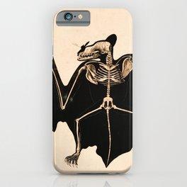 Vintage French zoological board - Bat skeleton iPhone Case