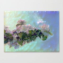 White flower on blue sky Canvas Print