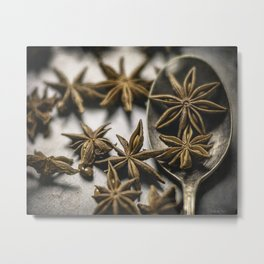 A Spoonful of Stars by TL Wilson Photography Metal Print