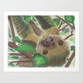 Suzie Sloth Art Print