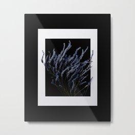 Lavender Love Metal Print