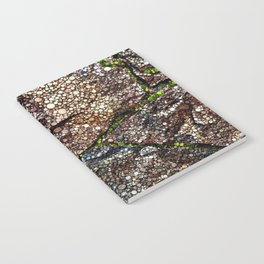 Rock Wall with Moss Abstract Notebook