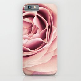 My Heart is Safe with You, My Friend - pale pink rose macro iPhone Case