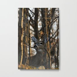 The Archer's Bows Are Broken Metal Print