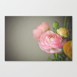 The prettiest one Canvas Print