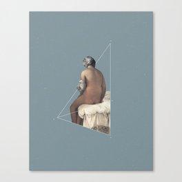 NOT The Valpinçon Bather Canvas Print