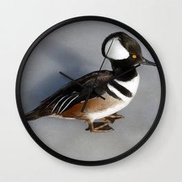 Hooded Merganser Duck Drake Wall Clock