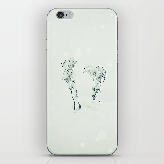 Midwinter iPhone & iPod Skin