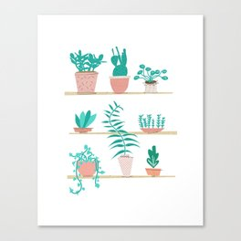 Pot Plants Canvas Print