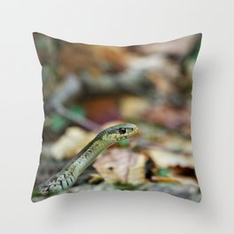 Snake in New Hampshire Mountains Throw Pillow