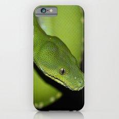 Green Python Portrait 2 iPhone 6s Slim Case