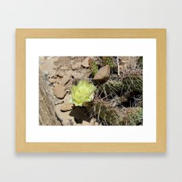 Cactus with Yellow Flower Framed Art Print
