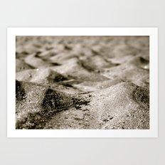 Ant's Perspective  Art Print