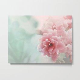 Rose flower photo photography Metal Print