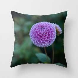 Summer Ball Throw Pillow