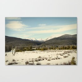 the never summers Canvas Print