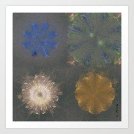Pajama Constitution Flower  ID:16165-101448-73620 Art Print