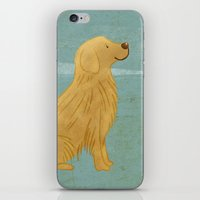 golden retriever iPhone & iPod Skins featuring Golden Retriever by 52 Dogs