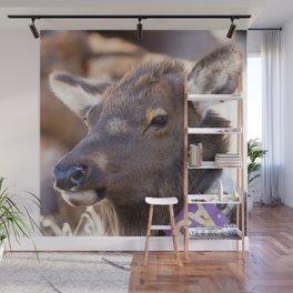 Watercolor Elk Cow 24, Estes Park, Colorado, A9 a Herd Standout Wall Mural