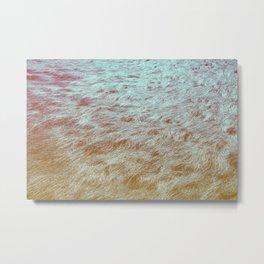 Channel Island Grass Metal Print