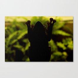 A Frog Canvas Print