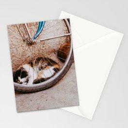 Cat at Bicycle at Moroccan street at the Medina Marrakesh - Photo Print - Travel photography Stationery Cards