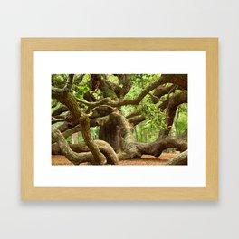 Angel Oak 1 Framed Art Print