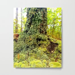 Moss is Boss Metal Print