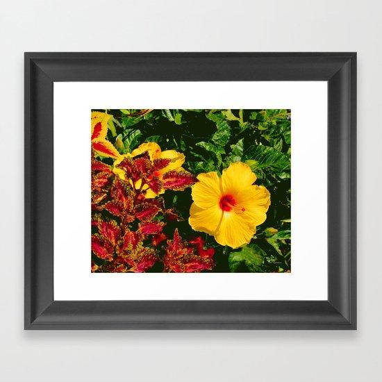 Hibiscus and Coleus Framed Art Print