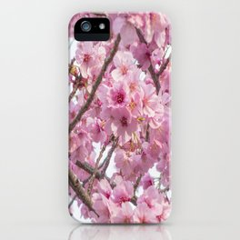 Cherry Blossom in spring iPhone Case