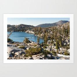 Upper Montane Forest — Desolation Wilderness Art Print