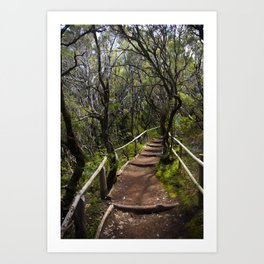the Magic path Art Print