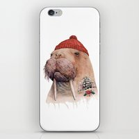 walrus iPhone & iPod Skins featuring Tattooed walrus by Animal Crew